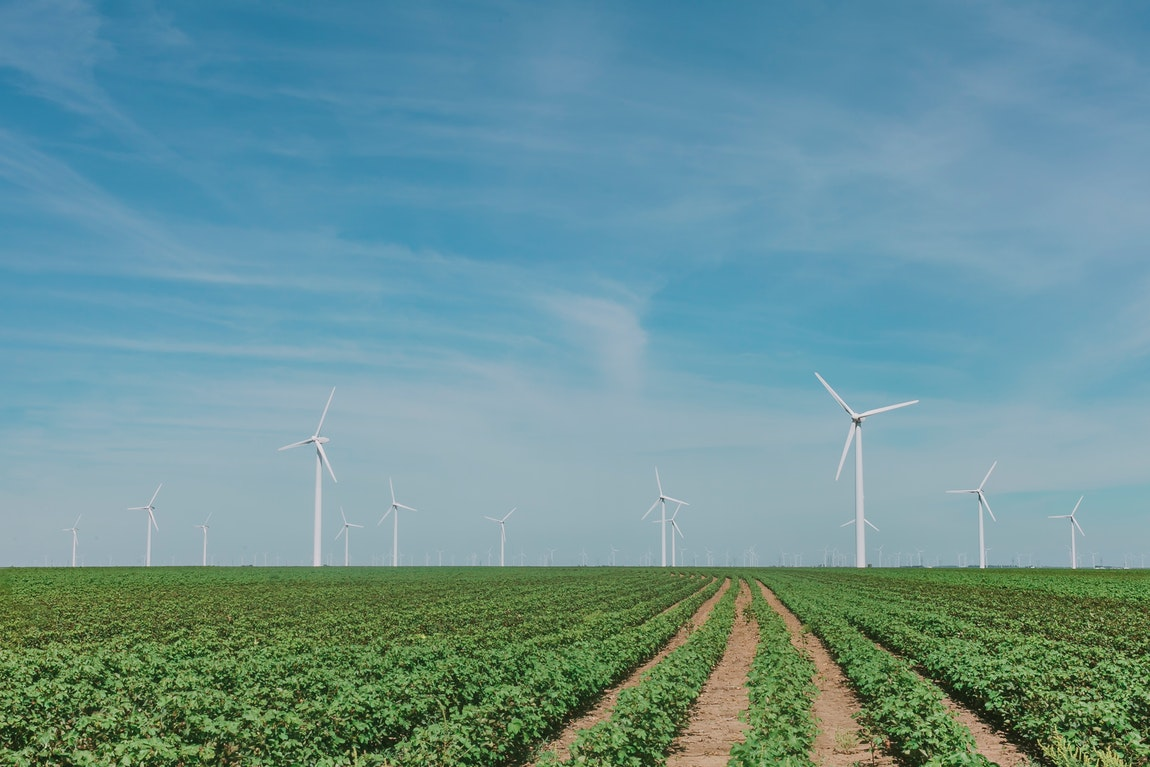 Wind Energy is Now Cheapest Source of New Electricity