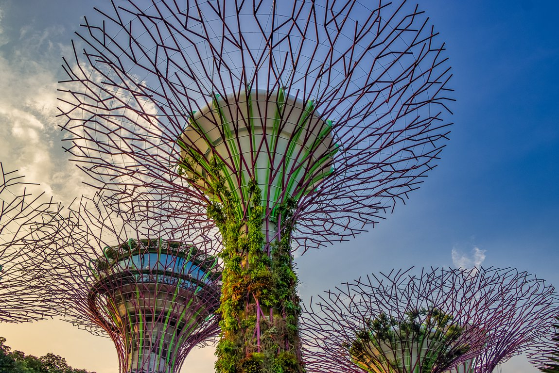 What It's Really Like To Work And Live In Singapore