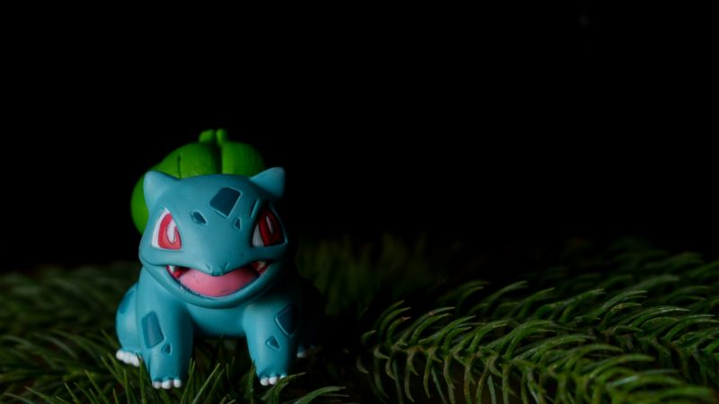 The Avid Pokémon Fan's Guide to Toy Collecting – Pointers to Keep in Mind
